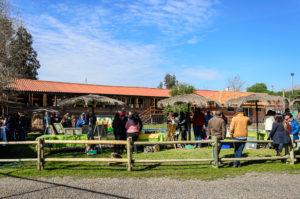 Campo Verde-31